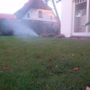 Garten_Dierhagen_WS2014